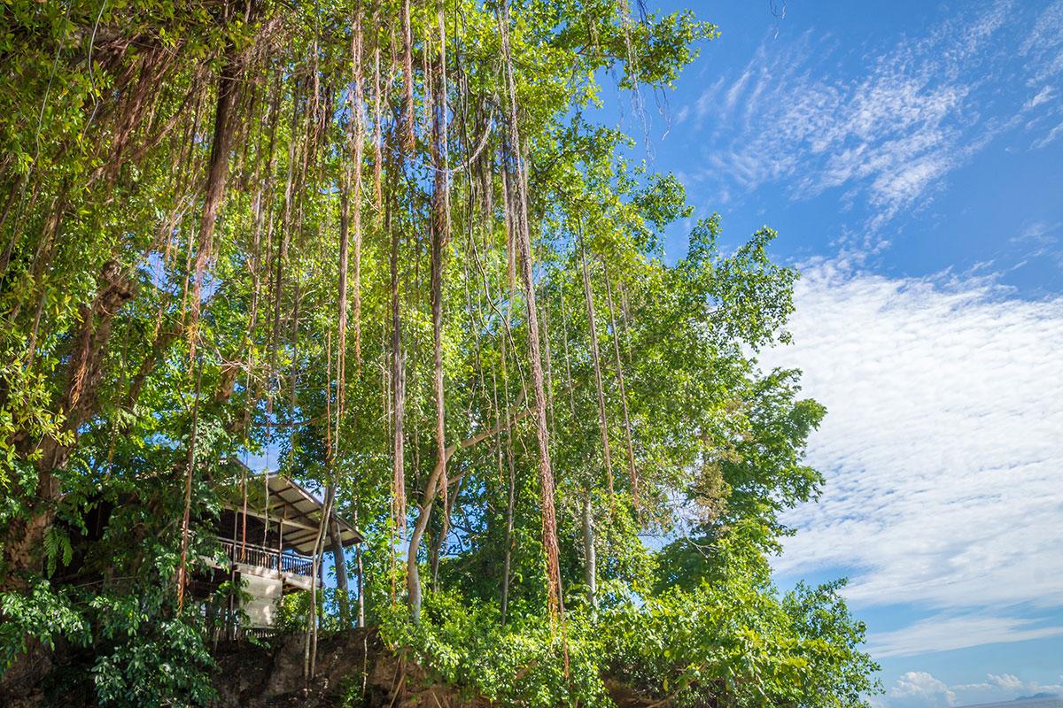 Sea Front Bungalow, Seabreeze Resort, Bunaken Island, Manado, Indonesia