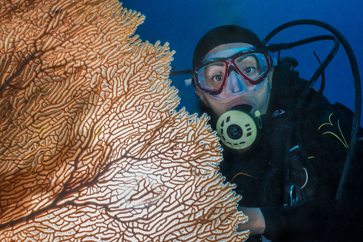 Diver with Coral, Bunaken Island, Manado, Indonesia