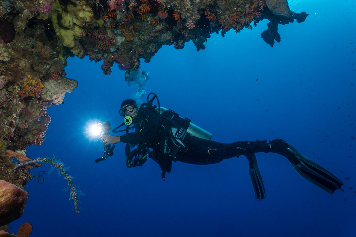 Diver with Coral Reef, Bunaken Island, Manado, Indonesia