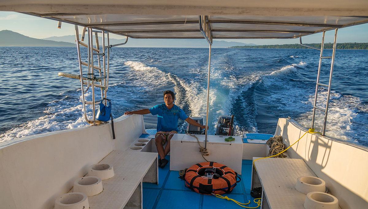 Dolphin Tour, Bunaken Island, Manado, Indonesia